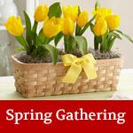 spring-sidebar